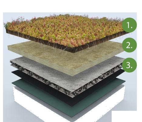 Sedumdak 1-2-3 - 60x200cm - 20 mm substraatmat